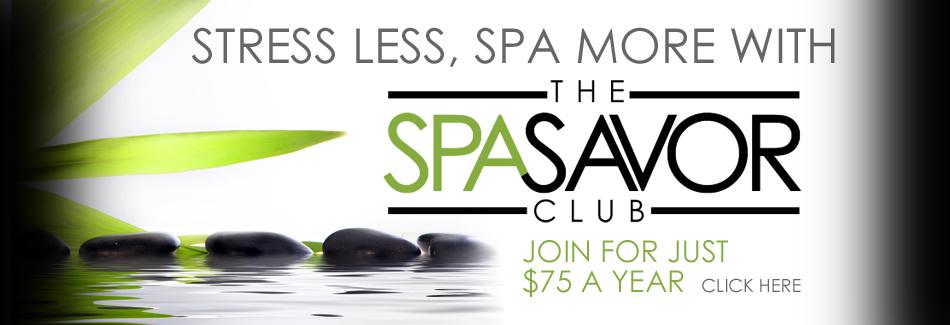 SpaSavor banner new