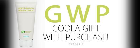 WebHeader GWP