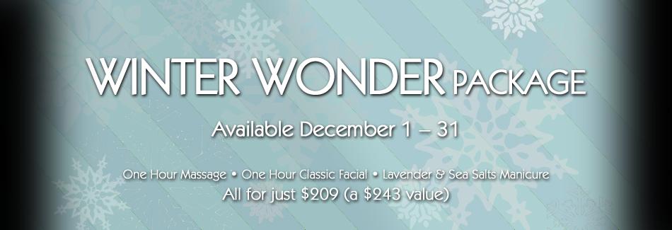 Winter Wonder w